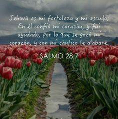 Mi versículo de hoy