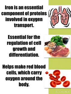 Iron in the body