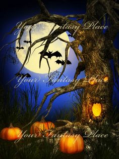 """""""Halloween Special"""" is a collection of 10 fantasy digital backgrounds combined with 3D elements, containing spooky trees and pumpkins under the full moon, just for your perfect Halloween night.   """"Halloween Special"""" backgrounds are high resolution JPEG files, size 3000x4000 pixels, 300 dpi."""