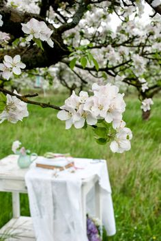 Beautiful Spring by Minty House Hello Spring, Spring Day, Spring Green, Minty House, White Cottage, Cottage Chic, Welcome Spring, Spring Blossom, Pear Blossom