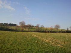 The field around us, Spoleto, Umbria, Italy