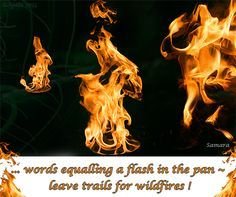 ... words equalling a flash in the pan ~ leave trails for wildfires !