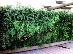 Irrigação Jardim Residencial