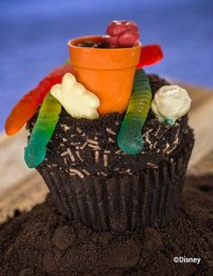 Chocolate Worms & Dirt Cupcake (Topped with a Teensy Flower Pot and Gummy Worms) - Disney World Limited Time Magic Cupcake Dirt Cupcakes, Disney Cupcakes, Themed Cupcakes, Disney World Food, Disney World Resorts, Walt Disney World, Icing Techniques, Downtown Disney, Cupcake Cookies