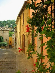 Pergola, Pesaro, Le Marche, Italy - this is where my great grandparents lived!