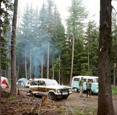want to go camping.