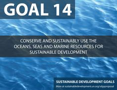 Corporate Citizenship evaluates SDG number Conserve and Sustainably use the Oceans, seas and marine resources for sustainable development. First Earth Day, Un Sustainable Development Goals, Environmental Degradation, International Development, Corporate Social Responsibility, Sustainable Energy, World Photography, World Leaders, Global Warming