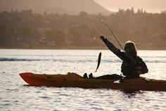 I got one! :) Sunrise kayak fishing on Lake Taupo