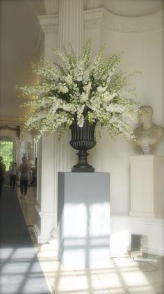Striking white delphinium for altar