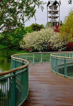 Another picture of the botanic gardens in Chicago.