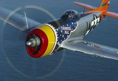 TARHEEL HAL P-47 Thunderbolt