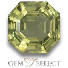 GemSelect features this natural untreated Apatite from Madagascar. This Green Apatite weighs 6.3ct and measures 11.1 x 11mm in size. More Asscher Cut Apatite is available on gemselect.com #birthstones #healing #jewelrystone #loosegemstones #buygems #gemstonelover #naturalgemstone #coloredgemstones #gemstones #gem #gems #gemselect #sale #shopping #gemshopping #naturalapatite #apatite #greenapatite #octagongem #octagongems #greengem #green Green Gemstones, Loose Gemstones, Natural Gemstones, Buy Gems, Asscher Cut, Gem S, Gemstone Colors, Madagascar, Shades Of Green