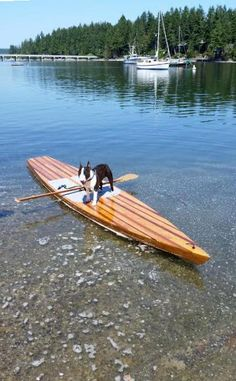Kaholo Wood Touring Stand-Up Paddleboard: Build Your Own in Under 60 Hours! Cool Boats, Small Boats, Paddle Boat, Paddle Boarding, Duck Boat Blind, Kayak Rack, Kayak Boats, Build Your Own Boat, Sup Yoga