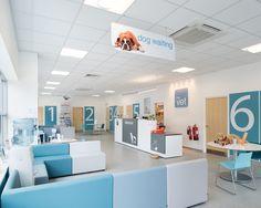 Reception area - Dog Waiting