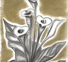 Calla in charcoal (1 of 3) by Annalisa Amato