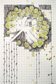 milkweed detail / rachel t robertson