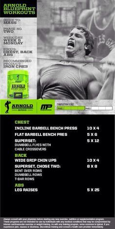 23 best arnold workout plan images on pinterest workouts coaching workout of the day arnold blueprint to mass chestbackabs powered by tag someone who wants to look like arnold schwarzenegger malvernweather Gallery
