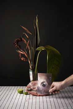 David Abrahams - kunst fotograaf.