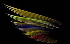 Ala Carta da parati, luce, ombra, piuma, uccello