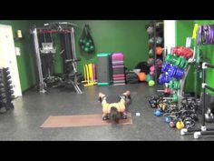 TEN IN TEN 2 X 2 FULL BODY WORKOUT #211 - YouTube