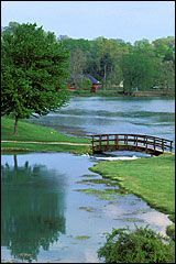 Mammoth Spring national natural landmark state park lake & river in north Arkansas - Arkansas State Parks Arkansas Usa, Mississippi, Eureka Springs, Rio, Skyline, State Parks, Places To See, Beautiful Places, National Parks