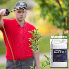 Our mosquito barrier repels SO many pests: 🚫Ticks 🚫Fleas 🚫Red Ants 🚫Grasshoppers 🚫Gnats 🚫Geese 🚫Deer 🚫Rabbits Mosquito Barrier, Mosquito Control, Bug Zapper, Grasshoppers, Mosquitoes, Ticks, Fleas, Ants, Rabbits