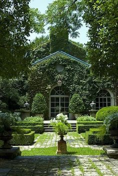 Love this lush, overgrown garden look.