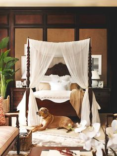4 canopy, spotted one at Bed Bath snd Beyond, white or ivory British Colonial Bedroom, British Colonial Style, Casa Hotel, West Indies Style, Tropical Style, Beautiful Bedrooms, Interior Design Living Room, Decoration, Bedroom Decor