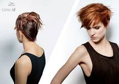 F-1= 8/4 F-2= 7/37 Color Perfect Wella