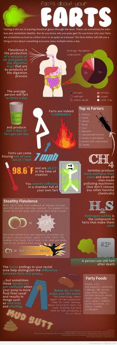 Fart facts you didn't know