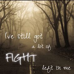 Fight song, rachel platten