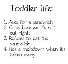 Toddler Memes - Funny Quotes + Photos Parents of Toddler Will Get Toddler Life - Moms of toddlers, you totally will understand! Check out all of our funny toddler memes - perfect for anyone who is parenting or parented a toddler. Funny Toddler Quotes, Toddler Meme, Funny Kids, Humour Parent, Mommy Humor, Baby Humor, Baby Memes, Funny Mom Memes, Funny Quotes
