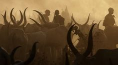 21 Facts About the Dinka Tribe of South Sudan