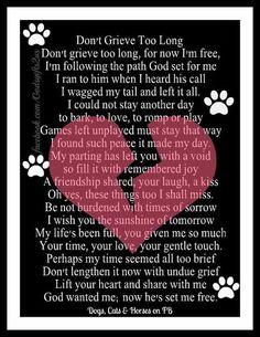 Meow meow and bark for me :-(