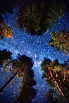 Shooting star in Edsbyn, Sweden (via starry nights / Shooting star in Edsbyn, Sweden)