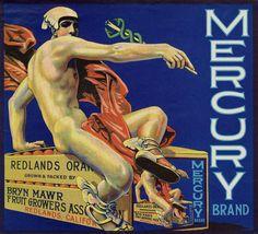 Mercury Brand Oranges - Redlands, CA