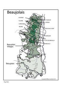 France: Beaujolais #Wine Region   by @wine_educators