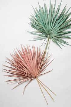 Colorful Dried Palm Bouquet by Anthropologie in Pink, Decor Cupcake Safari, Palm Wedding, Palm Fronds, Leaf Art, Flower Crafts, Dried Flowers, Bouquet, Wall Decor, Boho