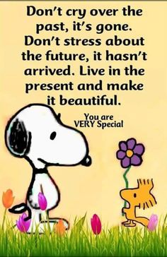 Don't cry over the past It's gone Don't stress about the future It hasn't arrived Live in the present and make it beautiful You are very special past future present is part of Snoopy quotes - Peanuts Quotes, Snoopy Quotes, Snoopy Love, Snoopy And Woodstock, Phrase Cute, Wisdom Quotes, Quotes To Live By, Dont Cry Quotes, Cute Quotes
