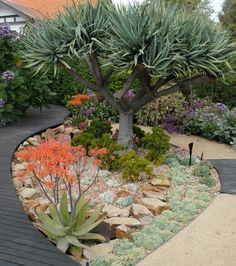 Garden Maintenance Melbourne | Garden Design Melbourne | Jenny Smith Gardens - Surburban Landscape Oasis