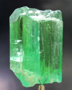 59 Gram Green Color Lustrous HIDDENITE KUNZITE Crystal with Excellent Clarity