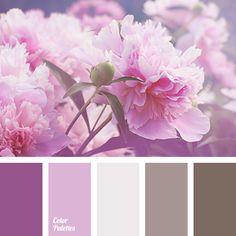 Color Palette #1362