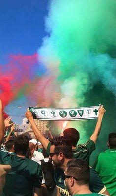 c250cb09e9453 26 melhores imagens de Palmeiras