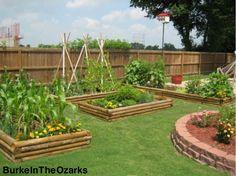 Planning my raised bed garden.....