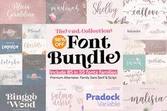 Font Bundle Collection 98Off #fontbundlecollection #hugebundle #calligraphyfontbundle