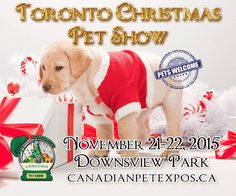 Contest time! We are giving away three sets of tickets to the Christmas Canadian Pet Expo - link on bio for full entry - and we are going to do a bonus entry right here on Instagram!  To enter all you have to do is 1) follow @treatshappen 2) tag a friend in the comments who you think should enter. One entry per comment unlimited entries.  The winner has to be able to pick up the tickets in Toronto.  #dogsofcanada #canadiandogs #canadadogs #dogsoftoronto #toronto #torontodogs #dogsofto…