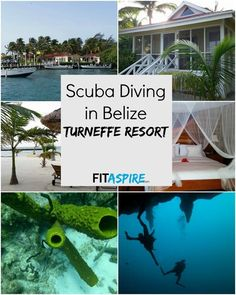 An adventure travel destination to add to your bucket list -- Scuba Diving in Belize! How we picked Belize, about the Turneffe Resort, & more about our diving experience. Take a virtual vacation with this post!