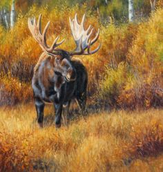 Moose painting by Cliff Rossberg: Wildlife Paintings, Wildlife Art, Animal Paintings, Deer Art, Moose Art, Eagle Artwork, Animal Sketches, Woodland Creatures, Western Art