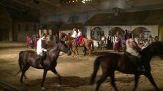 Az utolsó betyár 2015 teljes előadás Magyar Lovas Színház Komárom Horses, Animals, Animales, Animaux, Animal, Animais, Horse