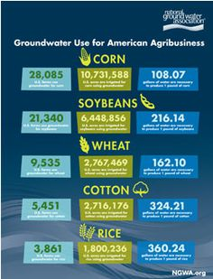 Groundwater Use for American Agribusiness